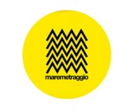 Maremetraggio International Short Film and Debut Works Festival